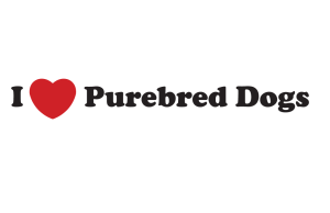 I Heart Purebred Dogs
