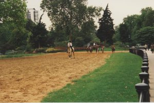 Leaving the group to canter down Rotten Row on Sedrick, a handsome buckskin from Hyde Park Stables
