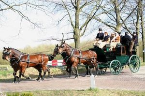 An 1887 Park Drag Brewster Carriage pulled by a team of fine bays
