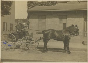 My great-grandfather Oscar Nelson drives a well-matched pair on Cortland Street, Sleepy Hollow, NY circa 1910