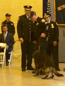 Sgt. William Finucane asked K-9 Vinny to sit to receive his new badge at the MTA Police Canine graduation at Grand Central Terminal