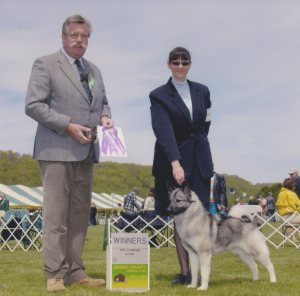 Jinx becomes a Ch. Elvemel For Your Eyes Only at Bucks County KC dog show in 2005.