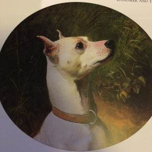 Prince - The White English Terrier - as seen in the George Earl Painting circa 1874
