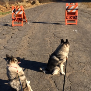 When one road closes...