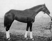 1925 Kentucky Derby Winner